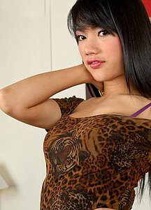 Honey 3 Ladyboy